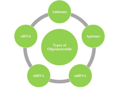 Antisense Oligonucleotide Therapeutics