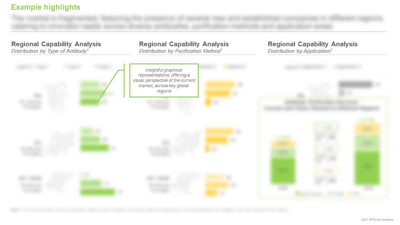 Antibody-Purification-Services-Market-Regional-Capability-Analysis