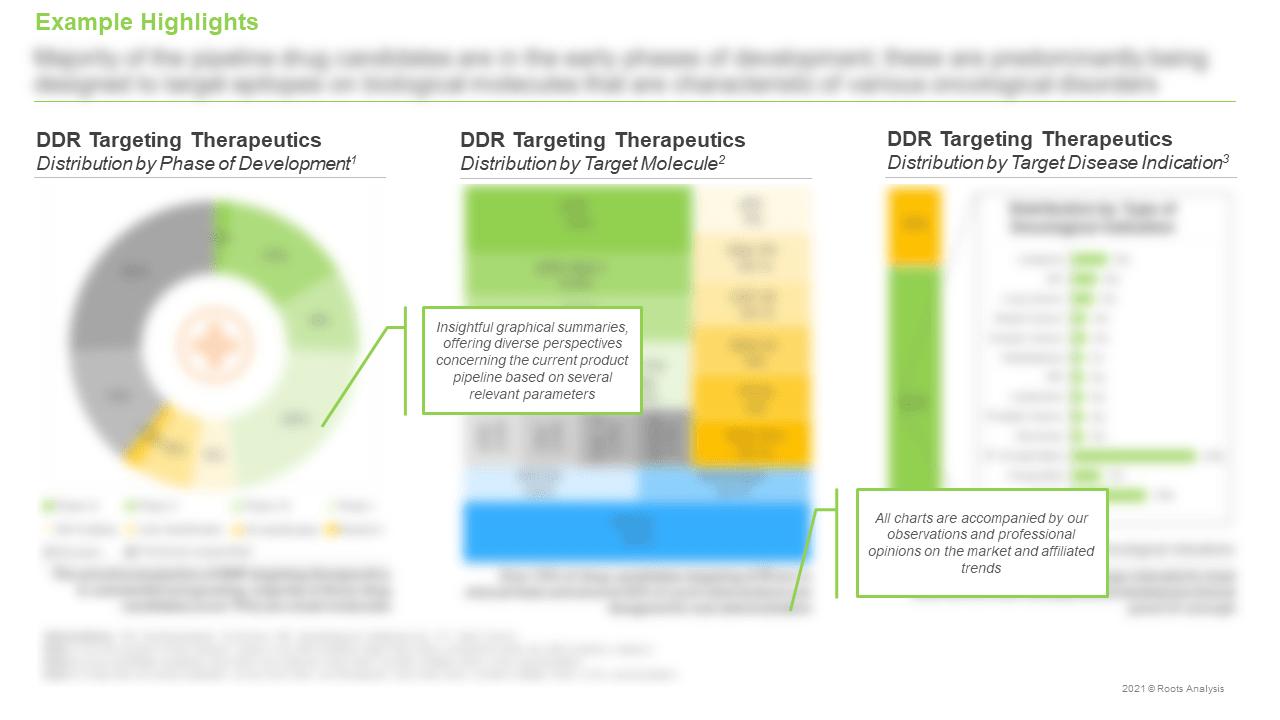 DNA-Damage-Response-Targeting-Therapeutics-DDR-Targeting-Therapeutics