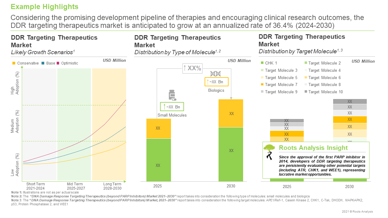 DNA-Damage-Response-Targeting-Therapeutics-Market-Growth-Scenarios