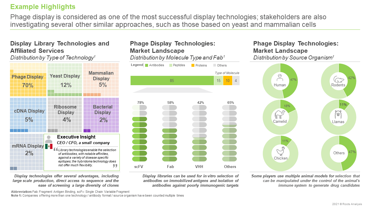 Display-Library-Technologies-and-Affiliated-Services-Market-Distribution-by-Type-of-Technology