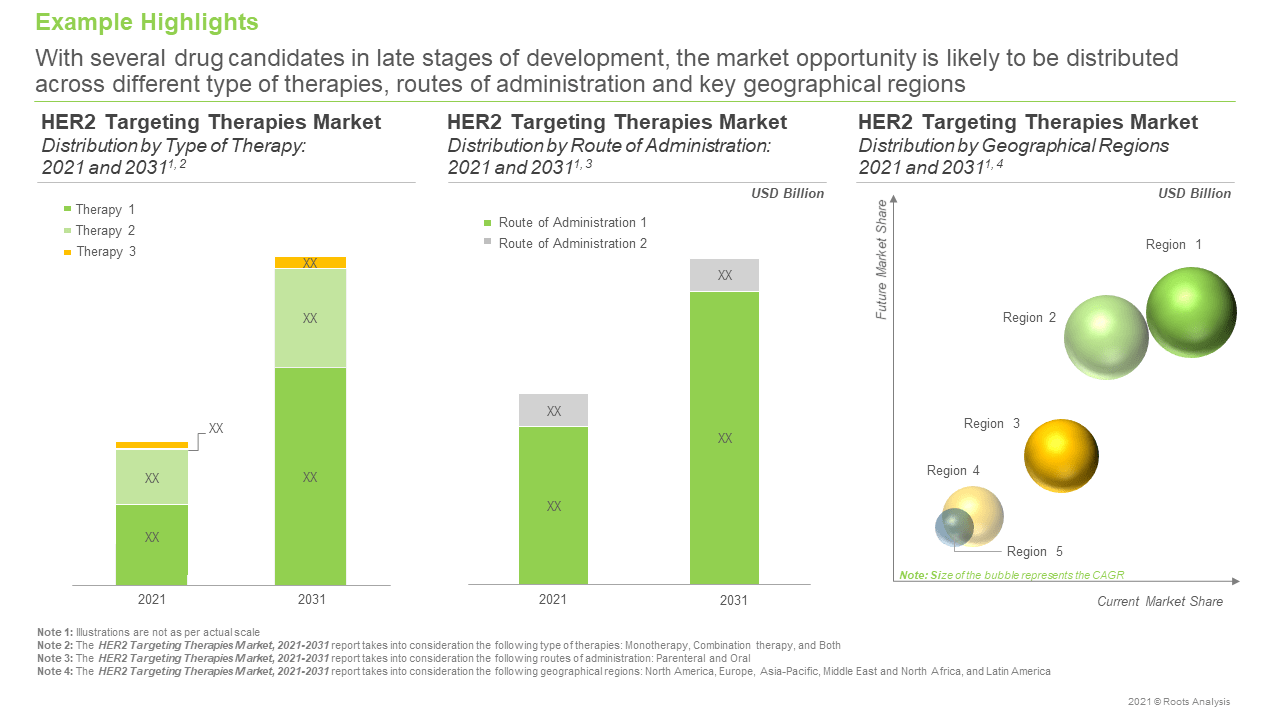 HER2-Targeting-Therapeutics-Market-Opportunity