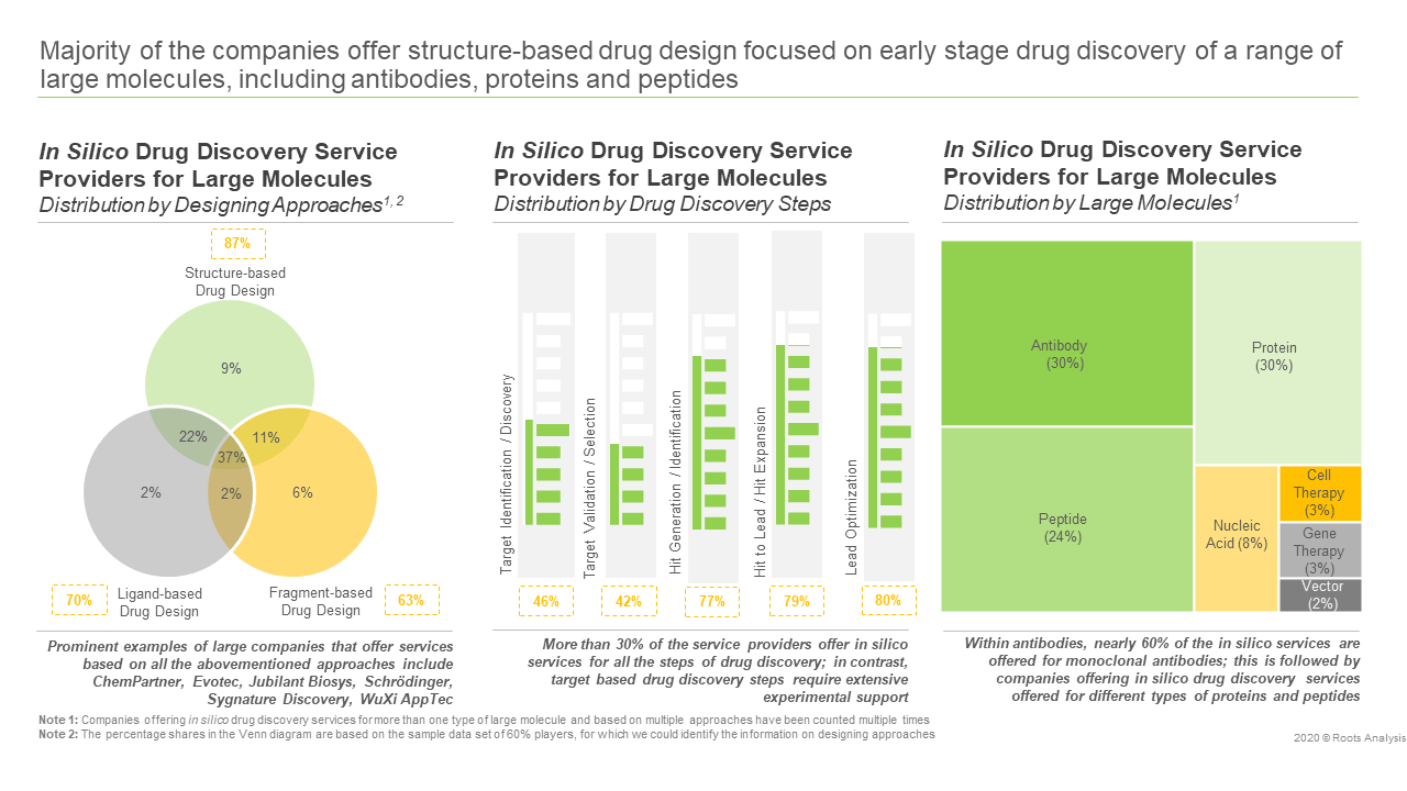In Silico Drug Discovery Services - Market Distribution