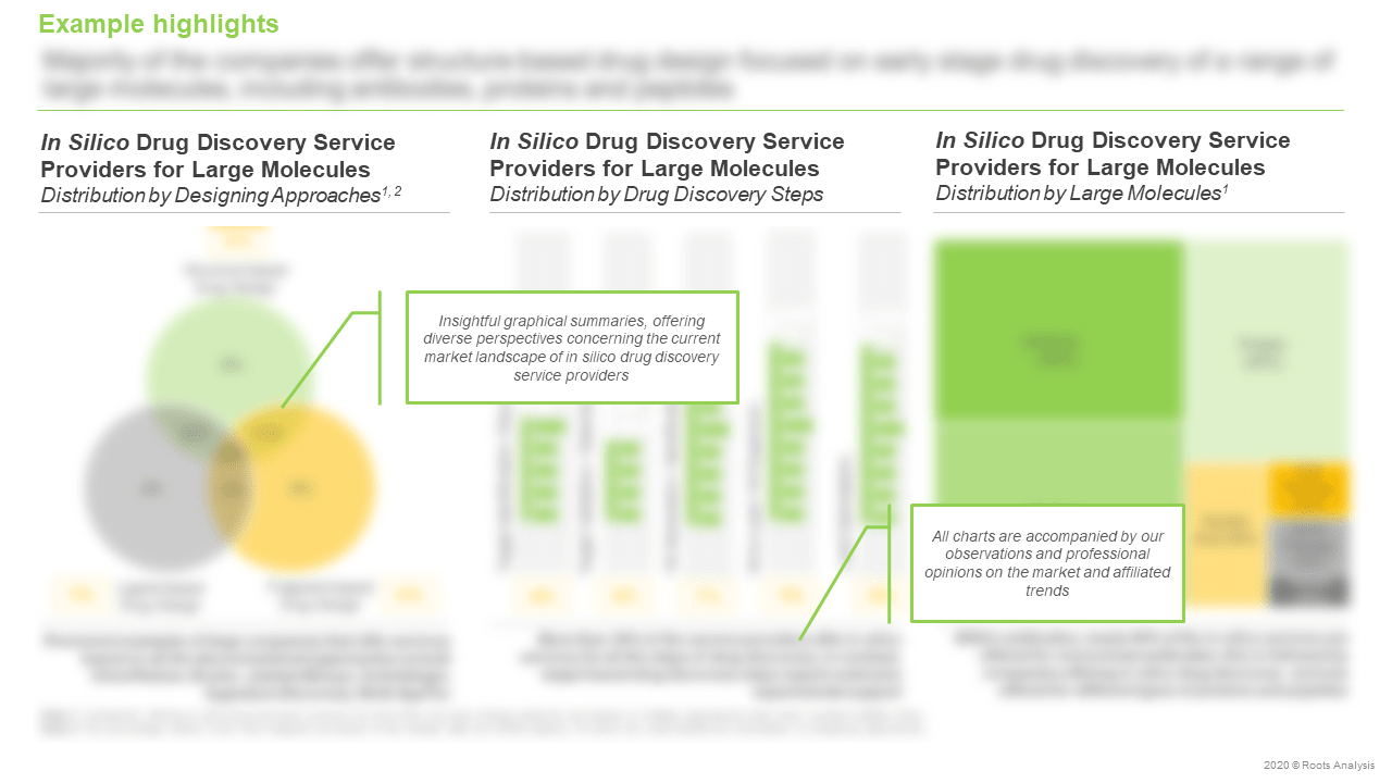 In-Silico-Drug-Discovery-Services-Market-Distribution