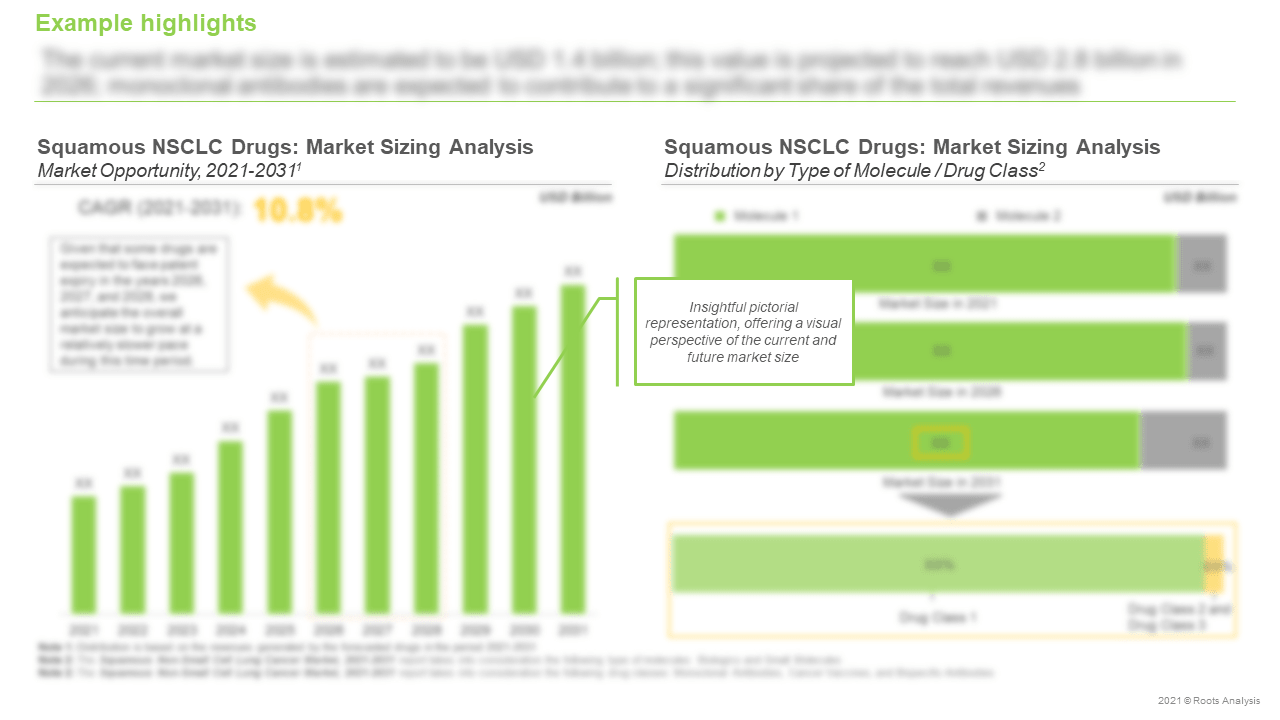 Squamous-Non-small-Cell-Lung-Cancer-Market-Sizing-Analysis