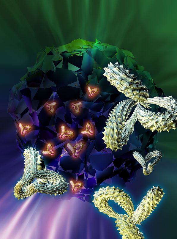 Fc Protein and Glycoengineered Antibodies Market (2nd Edition), 2016 - 2026